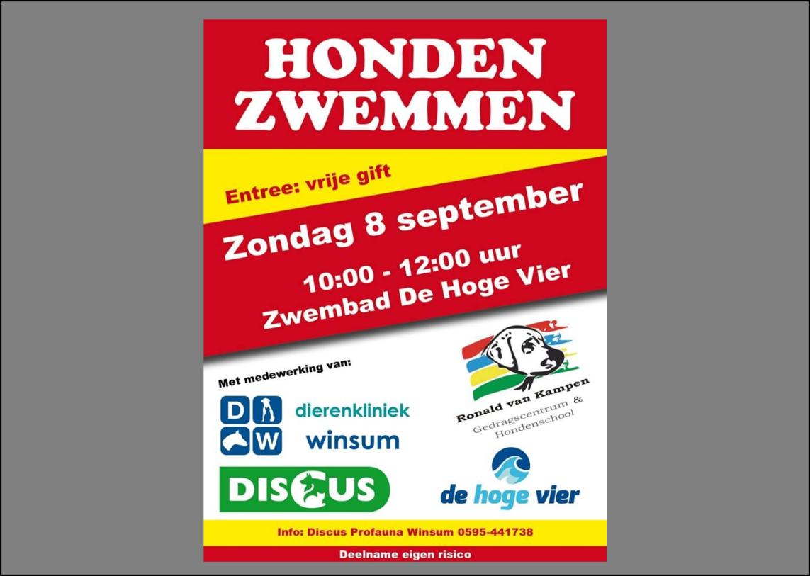 8 september hondenzwemmen